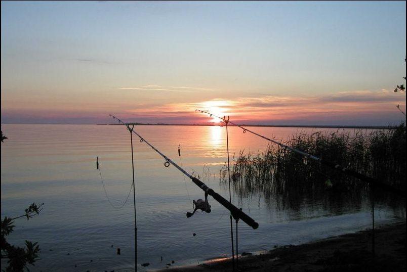 отдых и рыбалка в новой ладоге