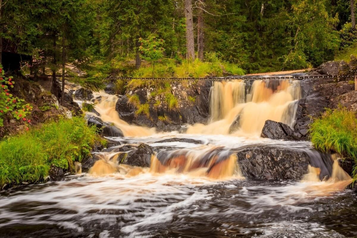 Фото эко-парка «Долина Водопадов»